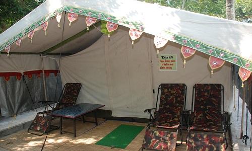 Nature Camp Bhitarkanika  ...