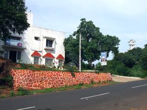 Panthika Dhauli