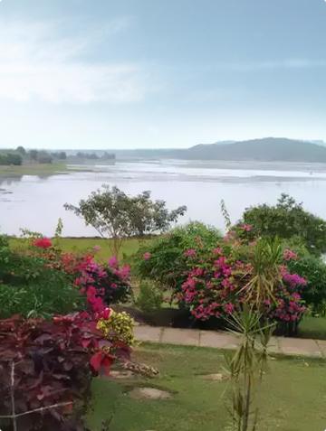 Ansupa Nature Camp